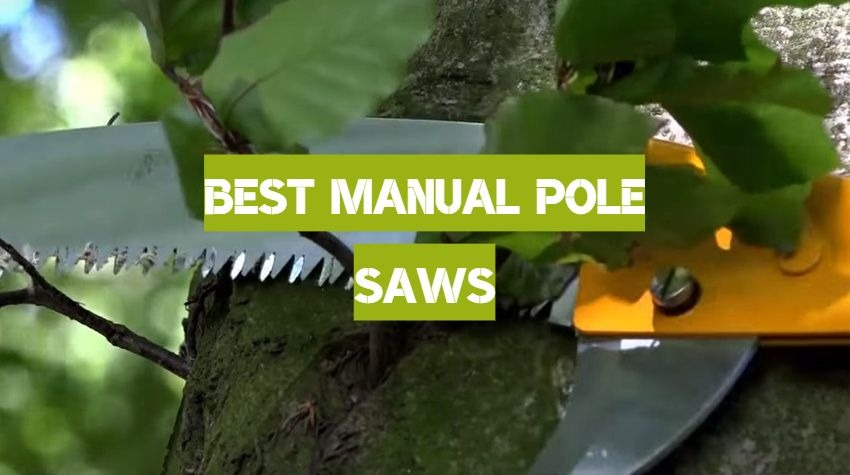 Best Manual Pole Saws